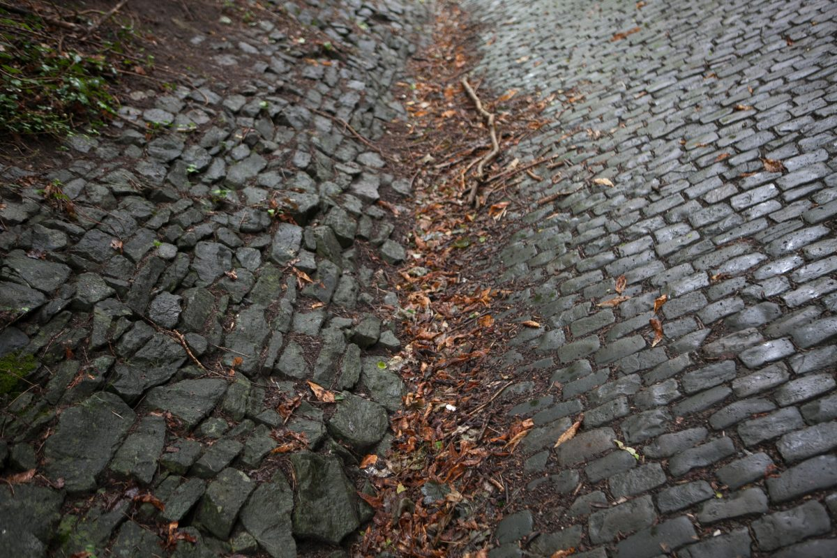 Rouleur Quiz: Name those cobbles