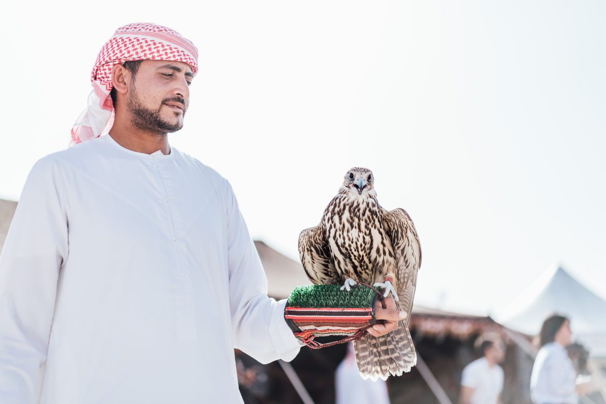 Dispatch from the desert: Abu Dhabi Tour